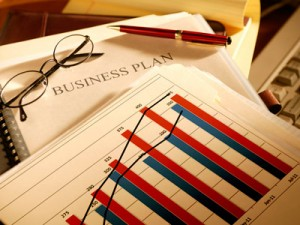 BUSINESS PLAN development for BUSINESS IN RUSSIA