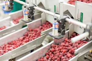 food processing trends 2015