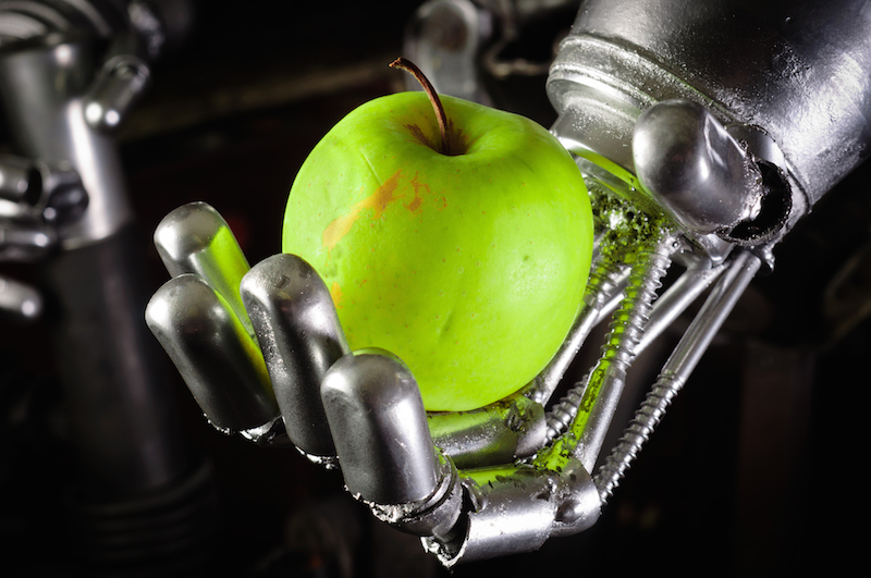 5 best practices for using robotics in your food processing plant