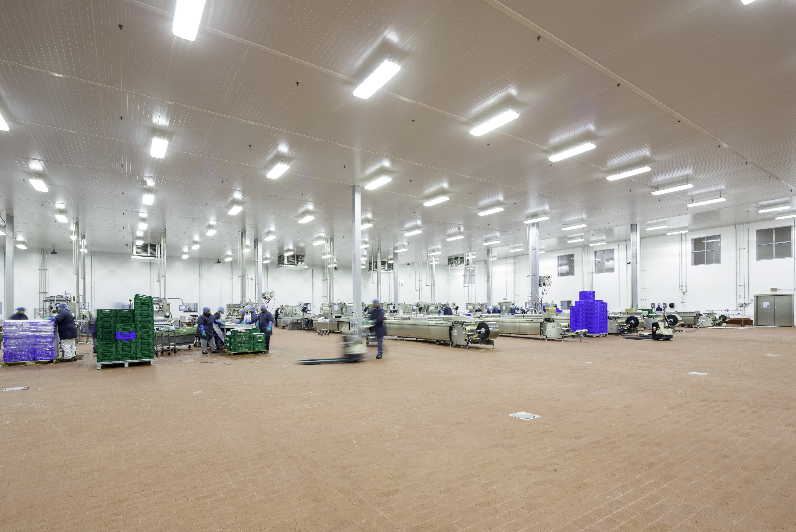 Food and Beverage Plant Flooring: 5 Questions to Ask When Selecting a Flooring System