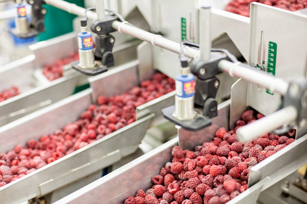 3 Unexpected Food Processing Solutions Inspired by Different Industries